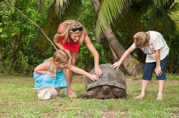 Children with a giant tortoise. North Island. Seychelles