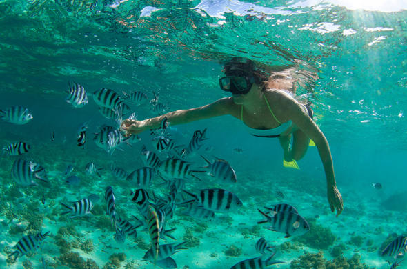 Snorkelling in Mauritius.
